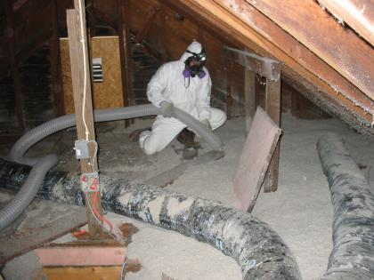Mold and Asbestos